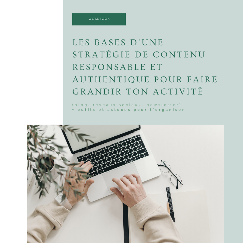 Carine_workbook_bases strat_contenu